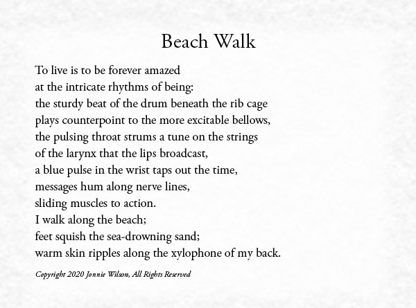 Beach Walk by LoVerne Brown