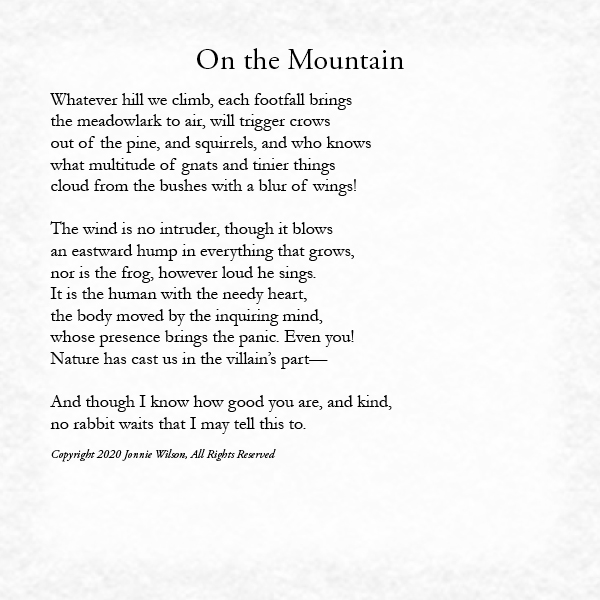 On the Mountain by LoVerne Brown